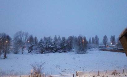 Parco Altobelli -Settebagni - RM neve ore 6.30 -foto Carmen Minutoli